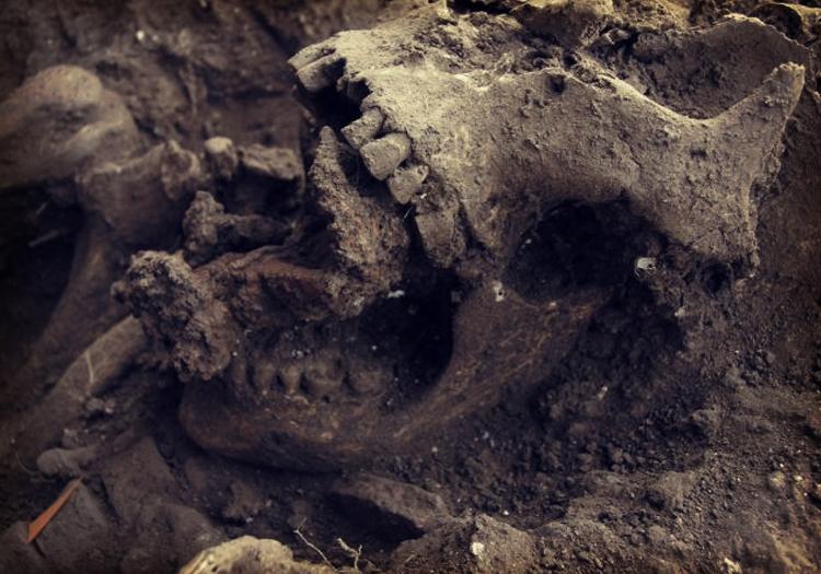 5 tombes de sorcières légendaires et les histoires sinistres derrière elles