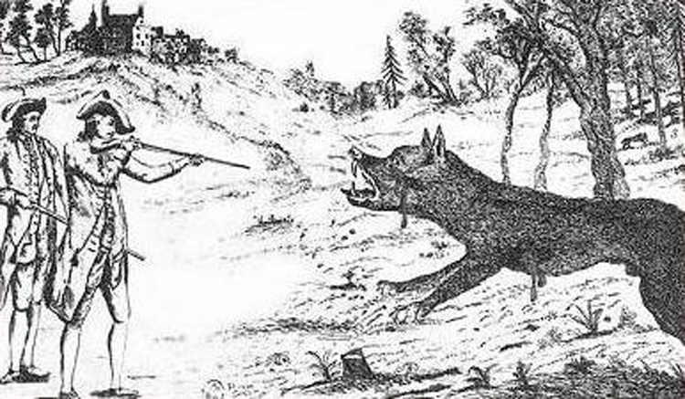 Beast of Gévaudan: The True Story Behind the Legendary Werewolf