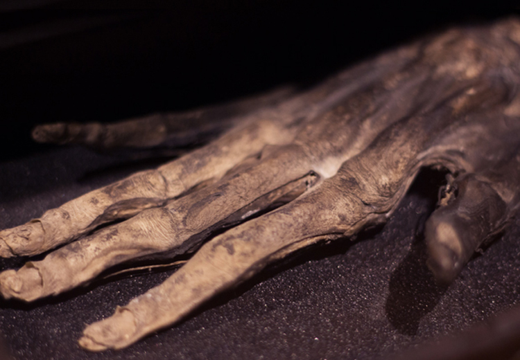 Macabre Magic: Origins of the Hand of Glory