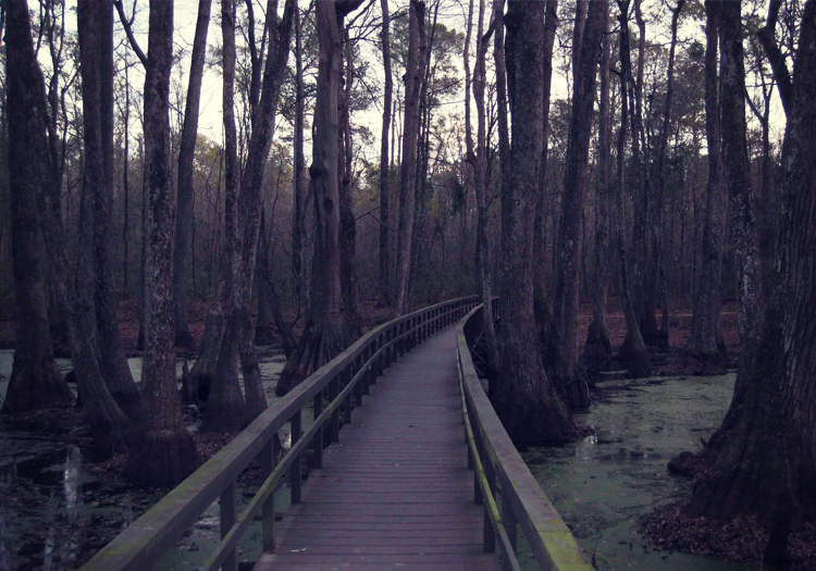 The 9 Most Haunted Camping Sites in America