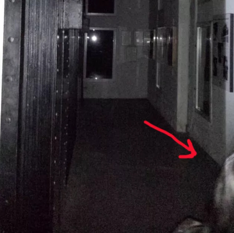 Haunted Camera: 15 People Share their Most Unexplainable Photographs