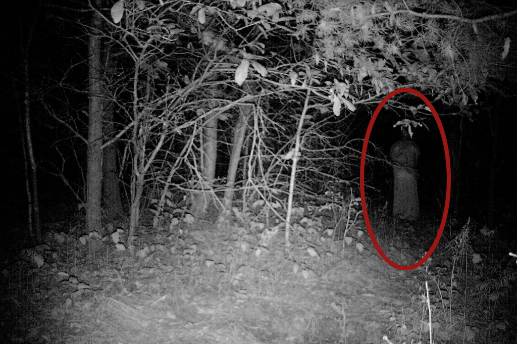13 Of The Most Convincingly Real Ghost Pictures We've Ever ...